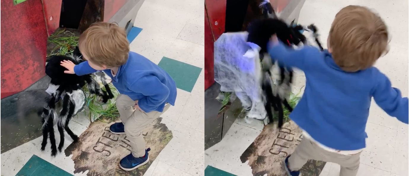 Toddler Brawls With Halloween Spider In Hilarious Video