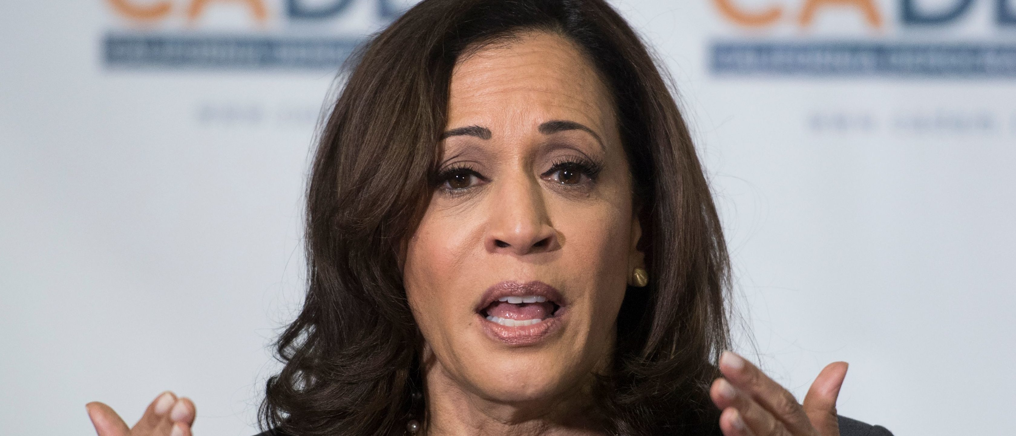 Kamala Harris Brags About Never Having A Non-Government Job