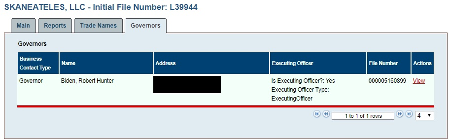 Hunter Biden listed as the sole director of Skaneateles, LLC, on Nov. 1. Address redacted. (D.C. Department of Consumer and Regulatory Affairs / Screenshot)