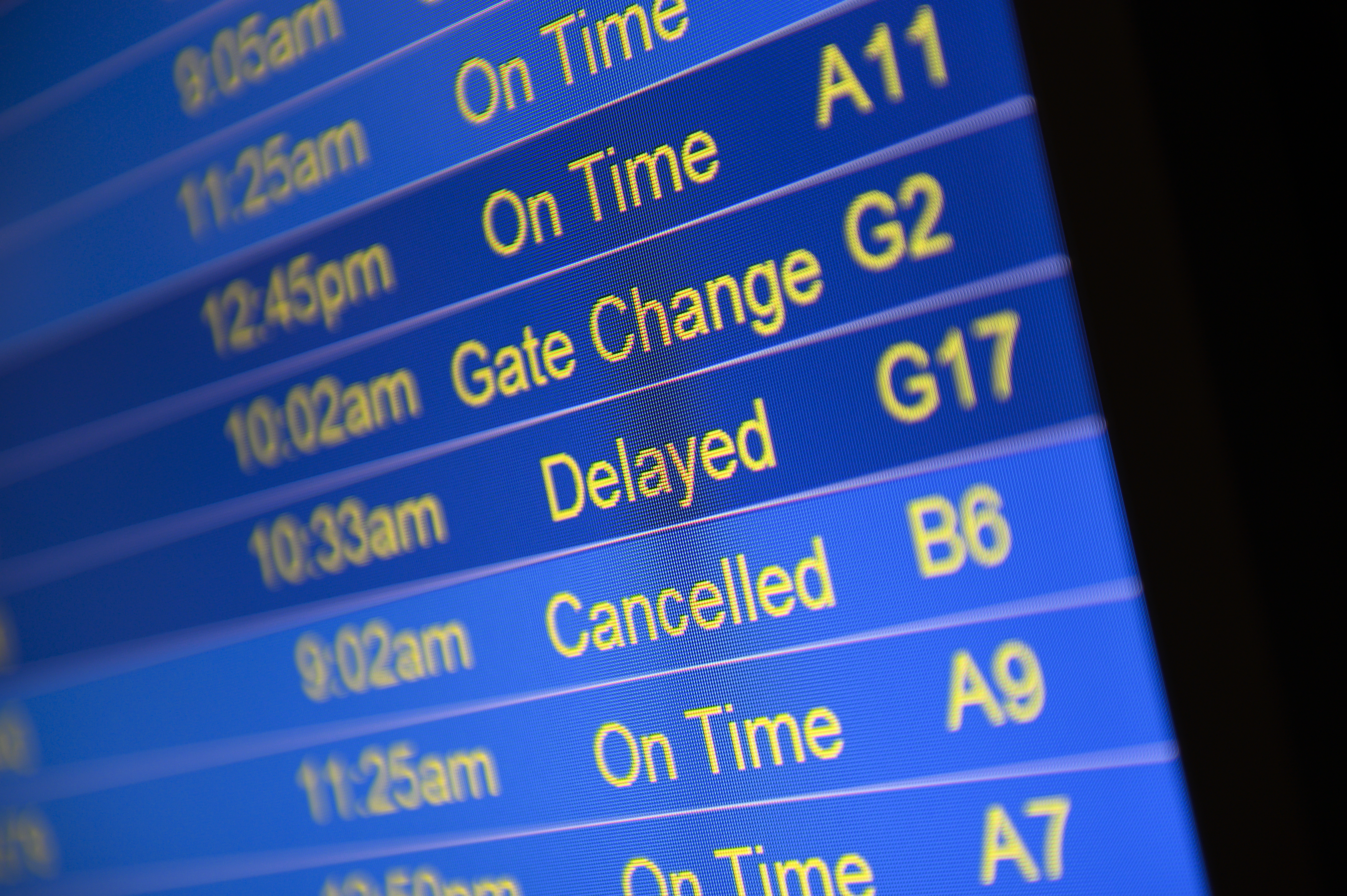 BLOOMINGTON, MN - NOVEMBER 27: Video boards at Minneapolis-St. Paul International Airport display flight statuses after a blizzard struck overnight on November 27, 2019 in Bloomington, Minnesota. Snowfalls neared 12 inches in parts of the state on one of the busiest travel days of the year. (Photo by Stephen Maturen/Getty Images)