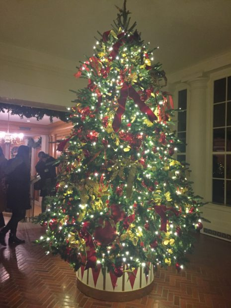 White House Christmas 2019 (Amber Athey/Daily Caller)