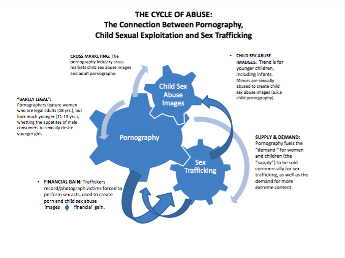 The Cycle of Abuse, graph courtesy of Enough is Enough.