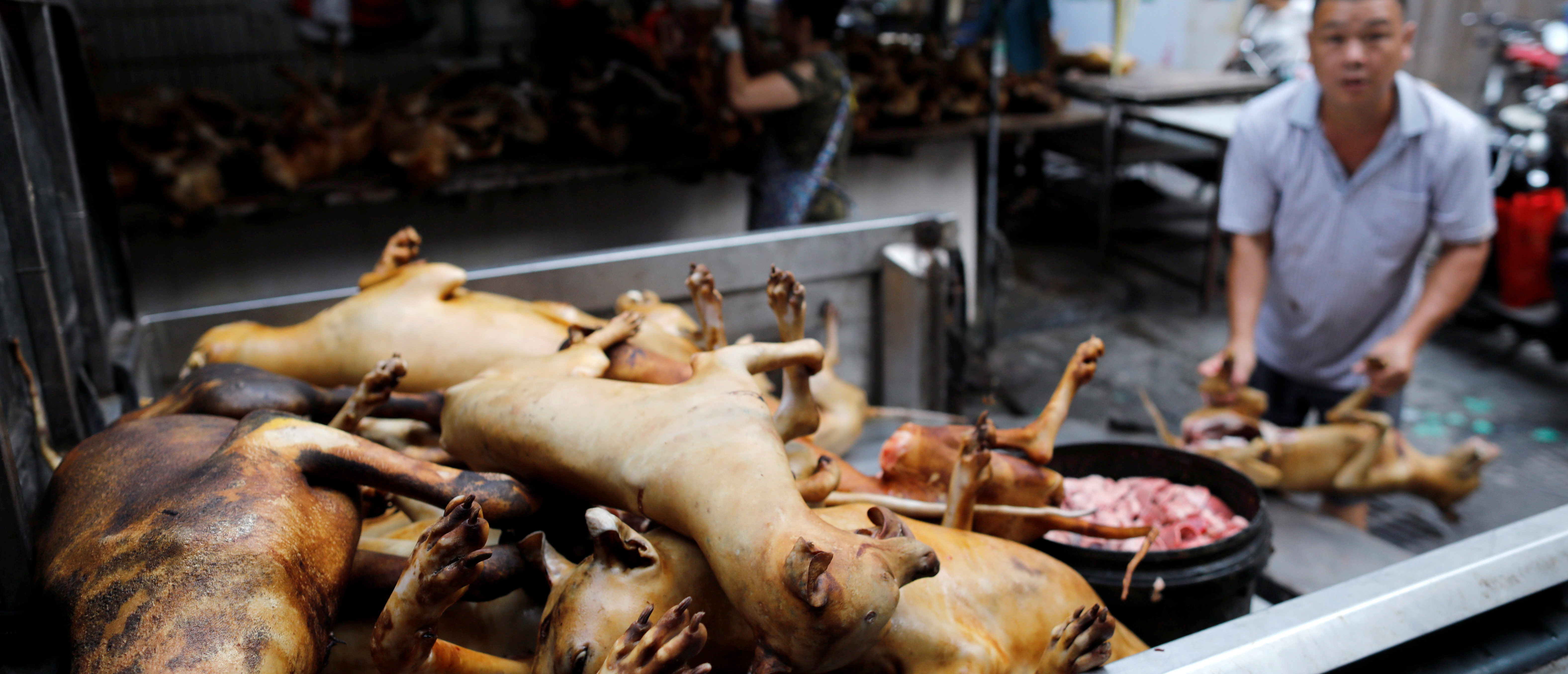 Chinese Markets Reopen— And They Still Sell Bats, Dogs And Cats