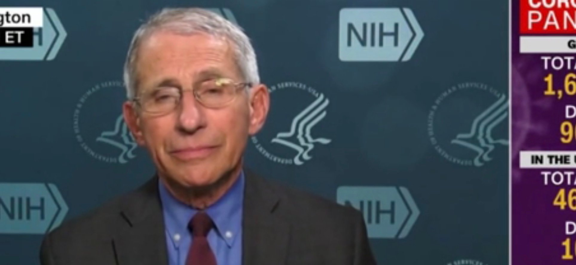 Fauci: Americans Could Carry COVID-19 Immunity Papers