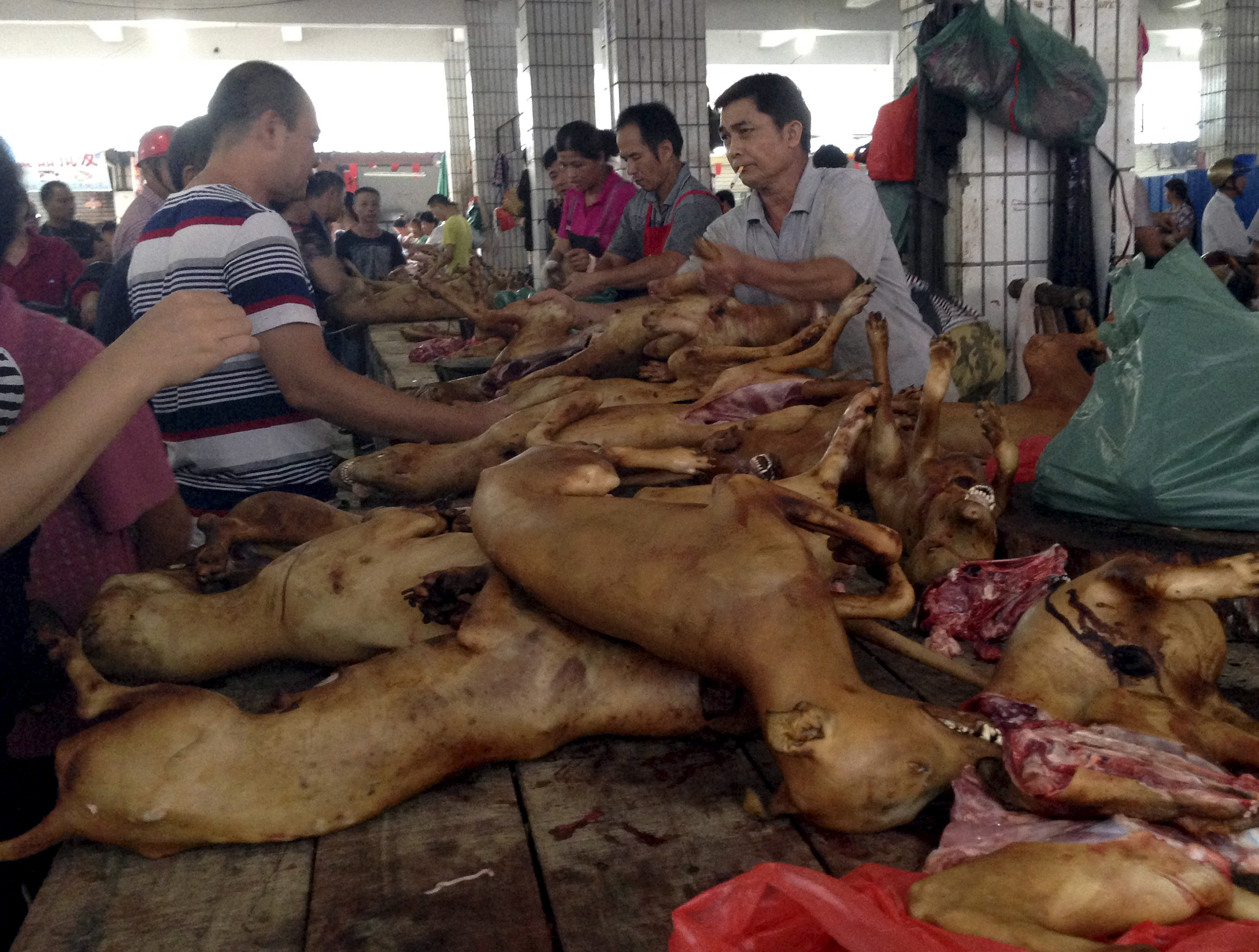 Vendors sell dog meat at a dog meat market on the day of local dog meat festival in Yulin, Guangxi Autonomous Region, June 22, 2015. (REUTERS/Kim Kyung-Hoon - GF10000135513)