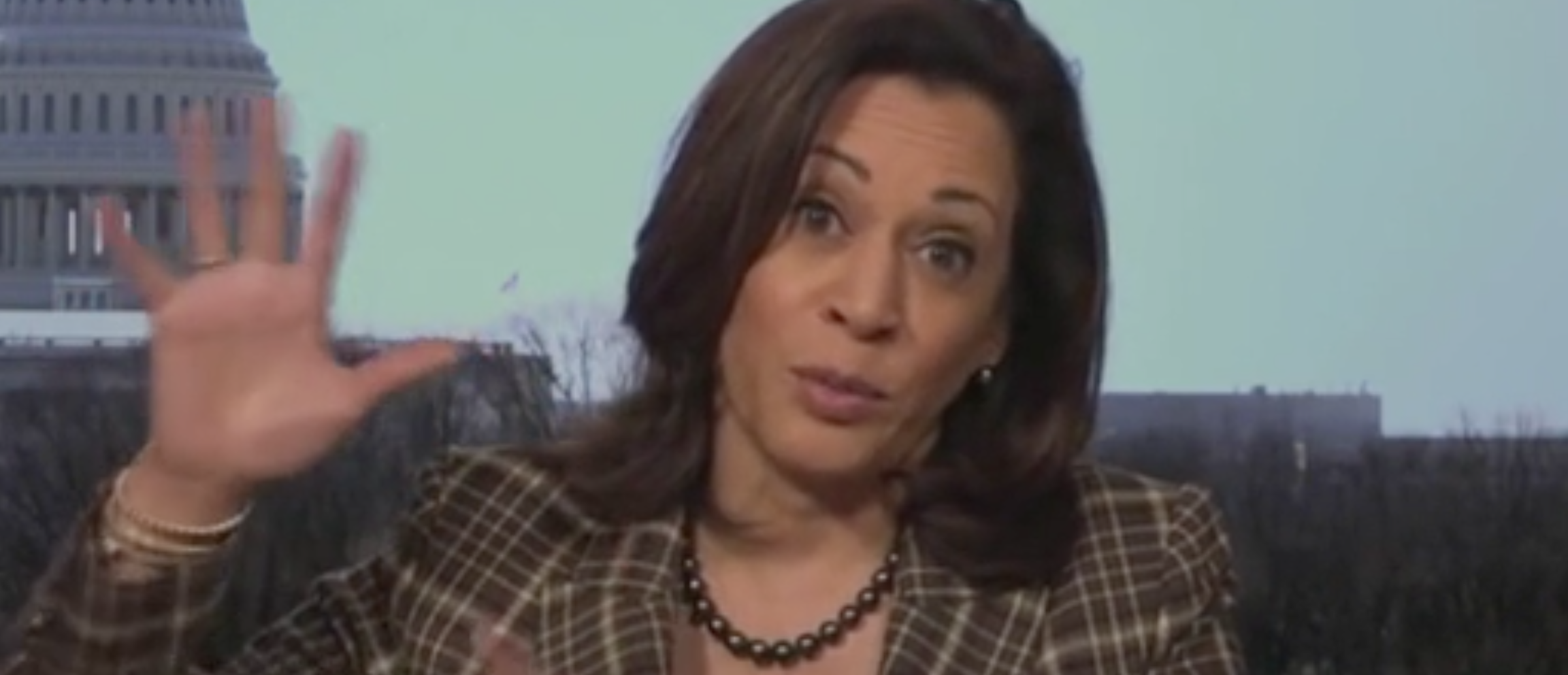 Kamala Harris Claims 'People Are Dying' Because Of Trump Administration's 'Vacuum Of Leadership'