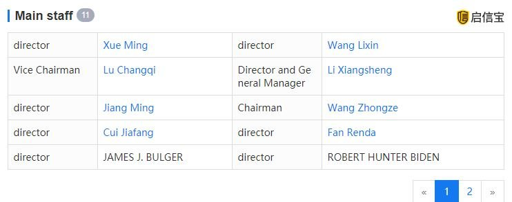 Hunter Biden listed as a member of the BHR Partners board of directors on Monday, 4/13. (Qixinbao / Screenshot)