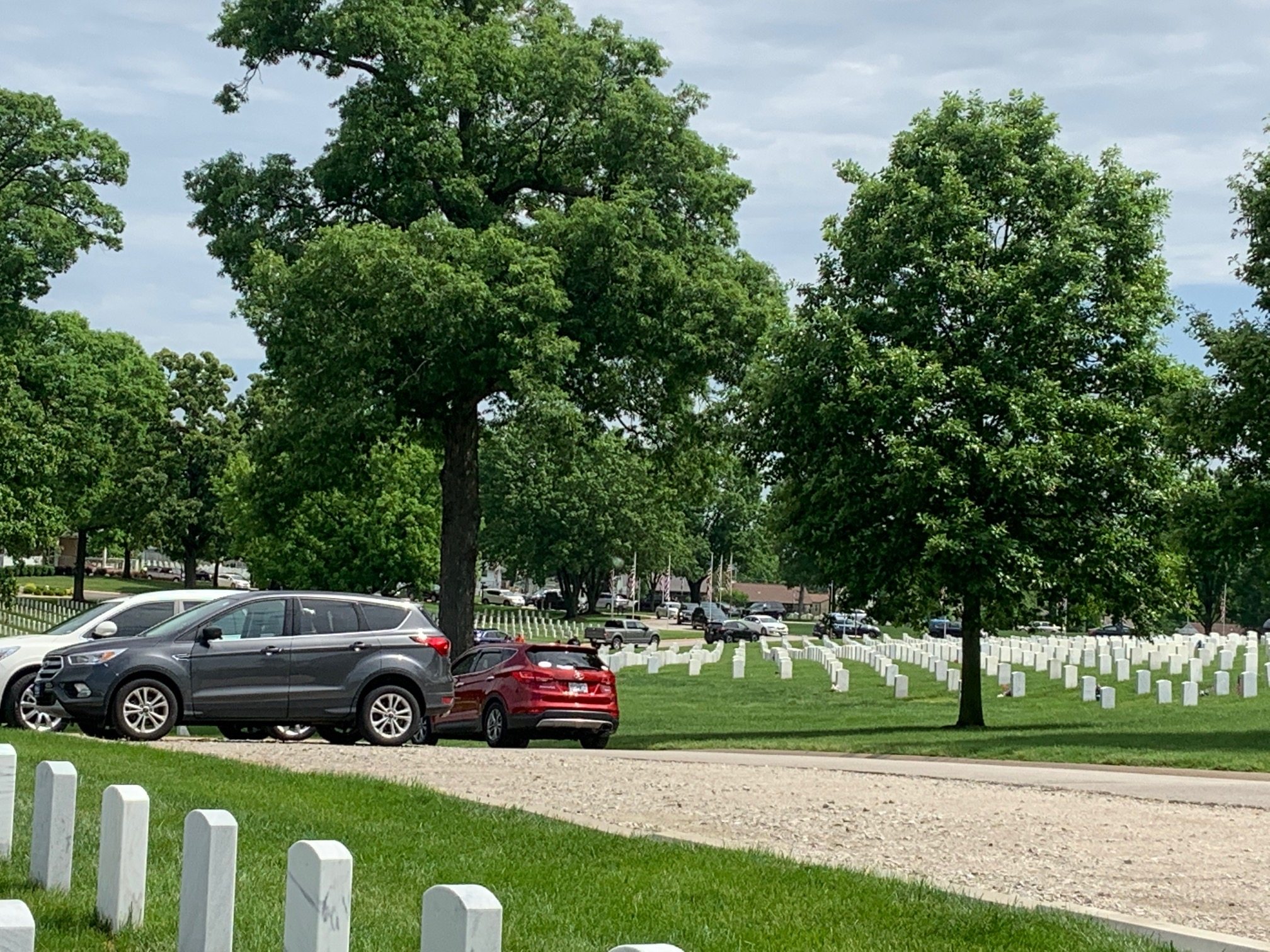Jefferson Barracks National Cemetery. Virginia Kruta/Daily Caller