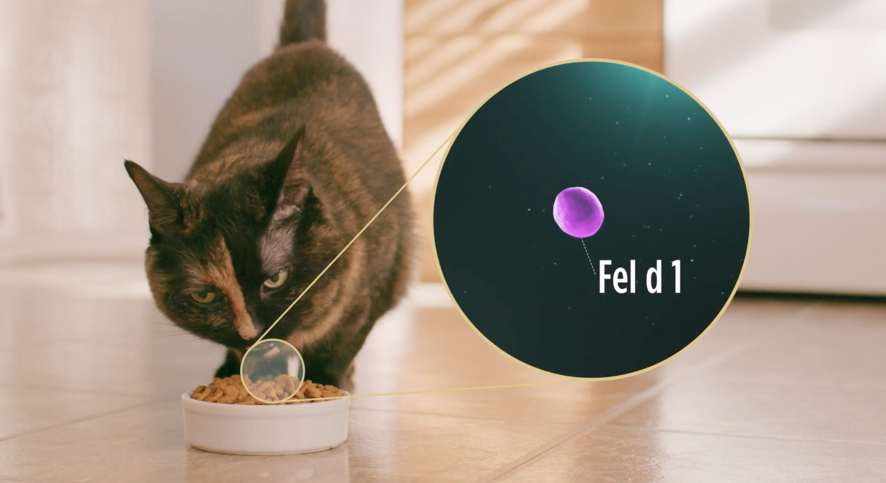 An advertisement for Nestlé Purina's LiveClear demonstrates how the product reduces allergens in cat saliva. (Photo: Nestlé Purina/Screenshot/YouTube)