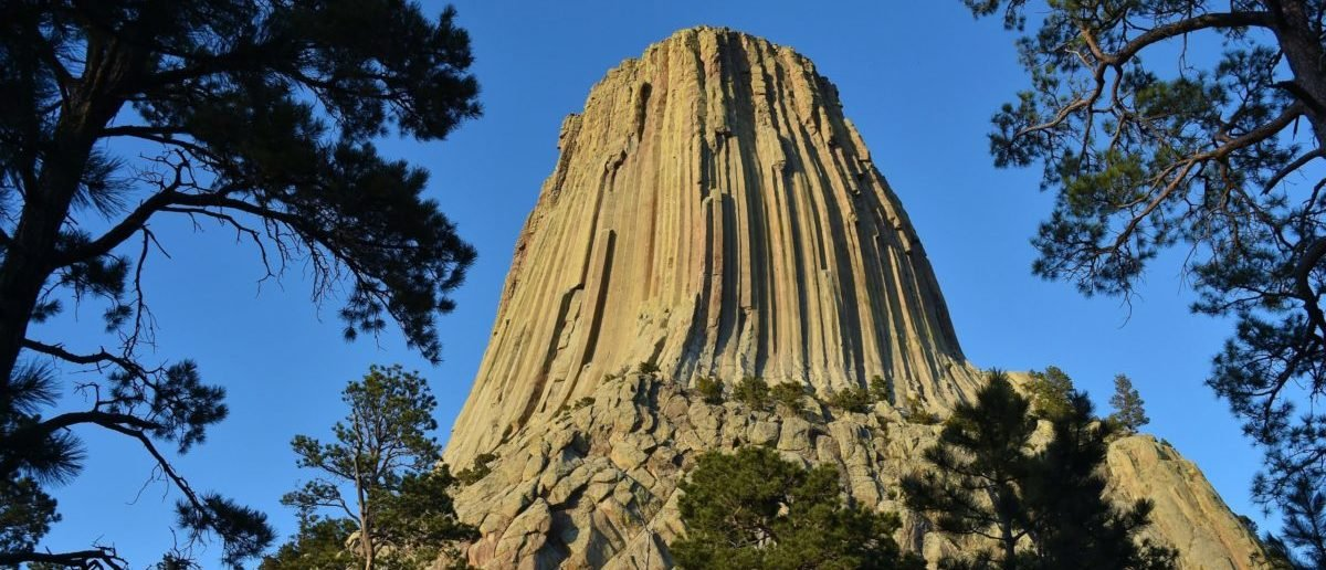 FACT CHECK: Did Scientists Discover Devils Tower Was Originally A Giant Tree? thumbnail
