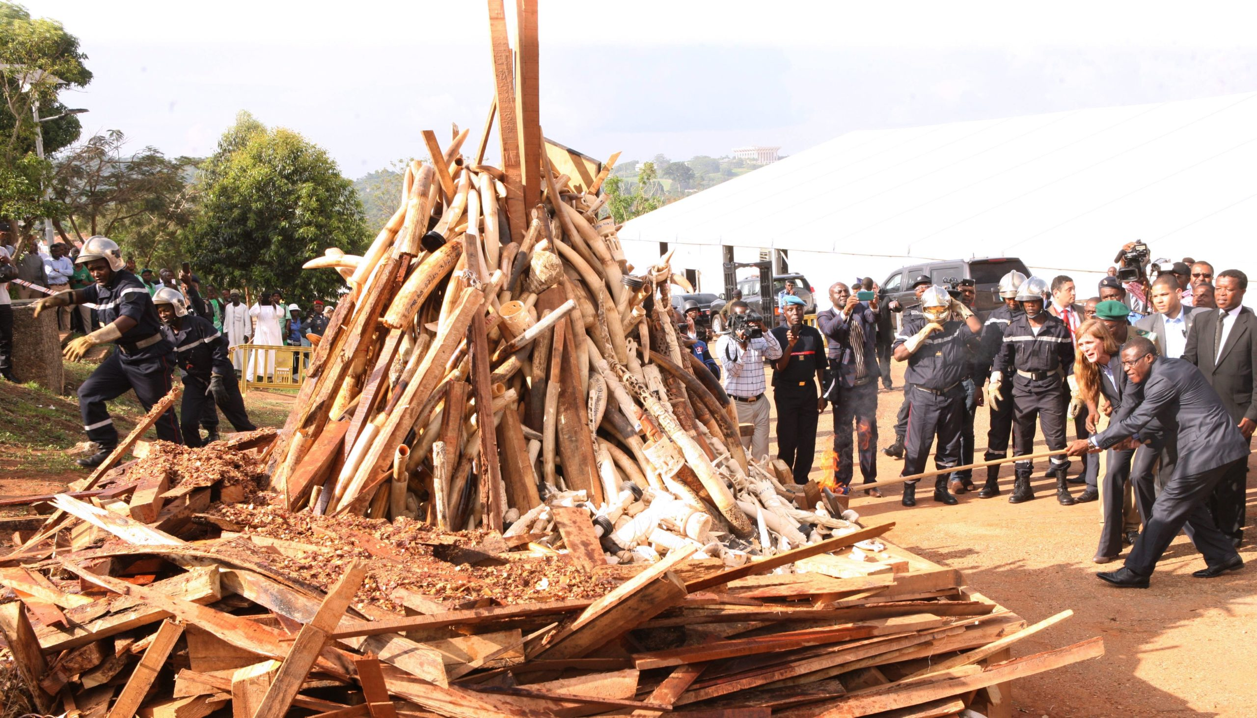 Cameroonian Minister of Wildlife Ngole Philip Ngwese and former U.S. ambassador to the United Nations Samantha Power set fire to a pile of ivory in Yaounde on April 19, 2016. (Reinnier Kaze/AFP via Getty Images)