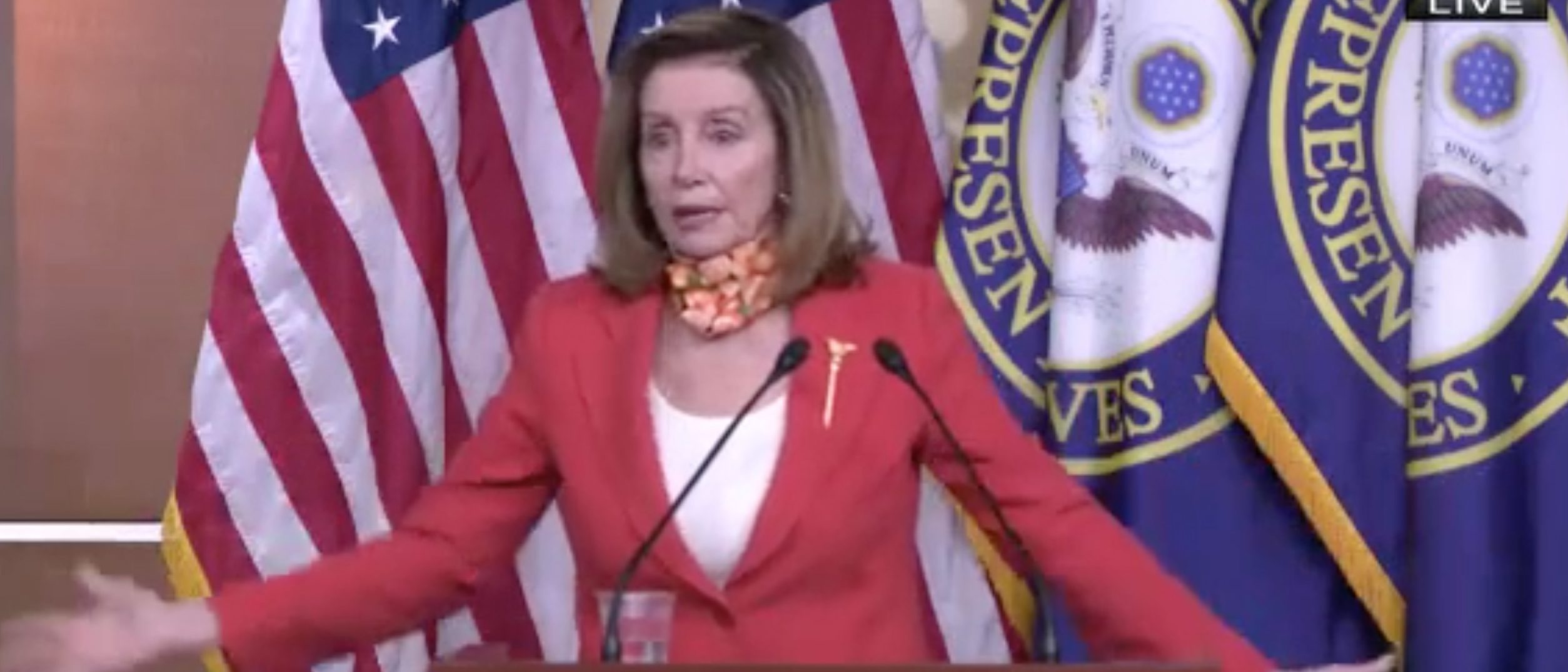 Pelosi Accuses Trump Of 'Trying To Have The Constitution Of The United States Swallow Clorox'