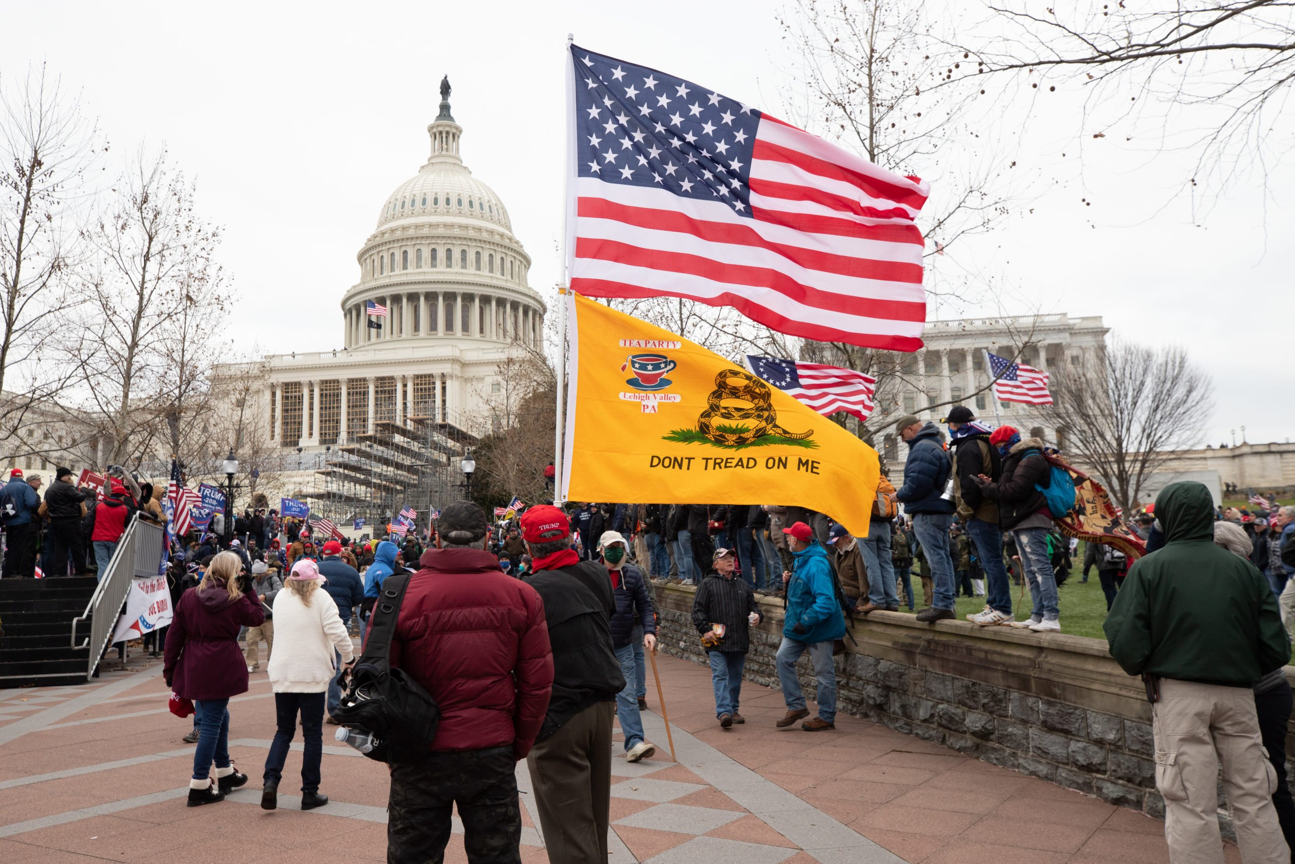 "Pro-President Donald Trump supporters gathered at the U.S. Capitol building for a ""stop the steal"" protest in Washington, D.C. on Jan. 6, 2021. (Kaylee Greenlee – Daily Caller News Foundation)"