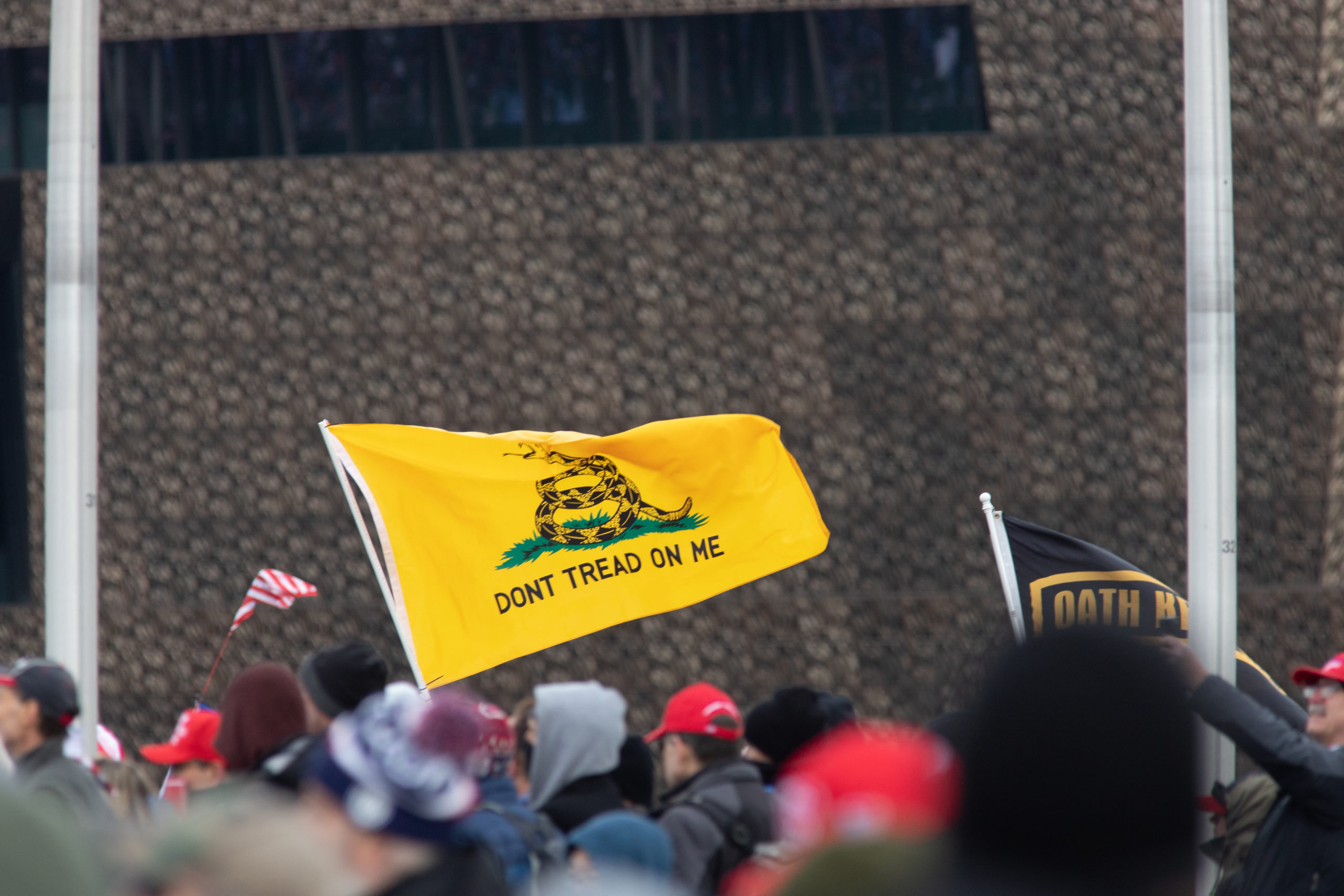 "A ""don't trad on me"" flag flew with a Trump flag ahead of his rally in Washington, D.C. on Jan. 6, 2021. (Kaylee Greenlee – Daily Caller News Foundation)"