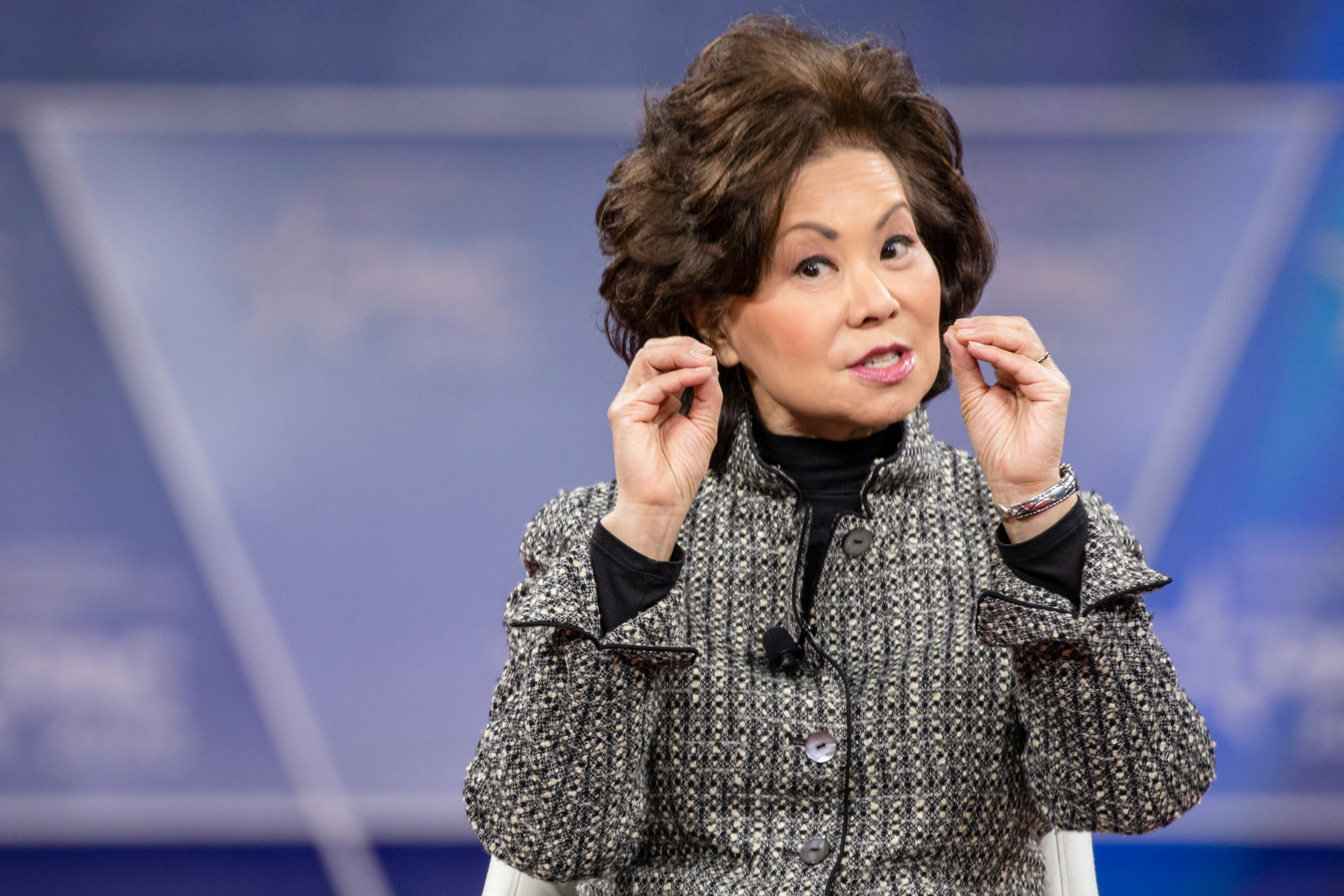 NATIONAL HARBOR, MD - FEBRUARY 28: Secretary of the Department of Transportation Elaine Chao speaks during the Conservative Political Action Conference 2020 (CPAC) hosted by the American Conservative Union on February 28, 2020 in National Harbor, MD. (Photo by Samuel Corum/Getty Images)