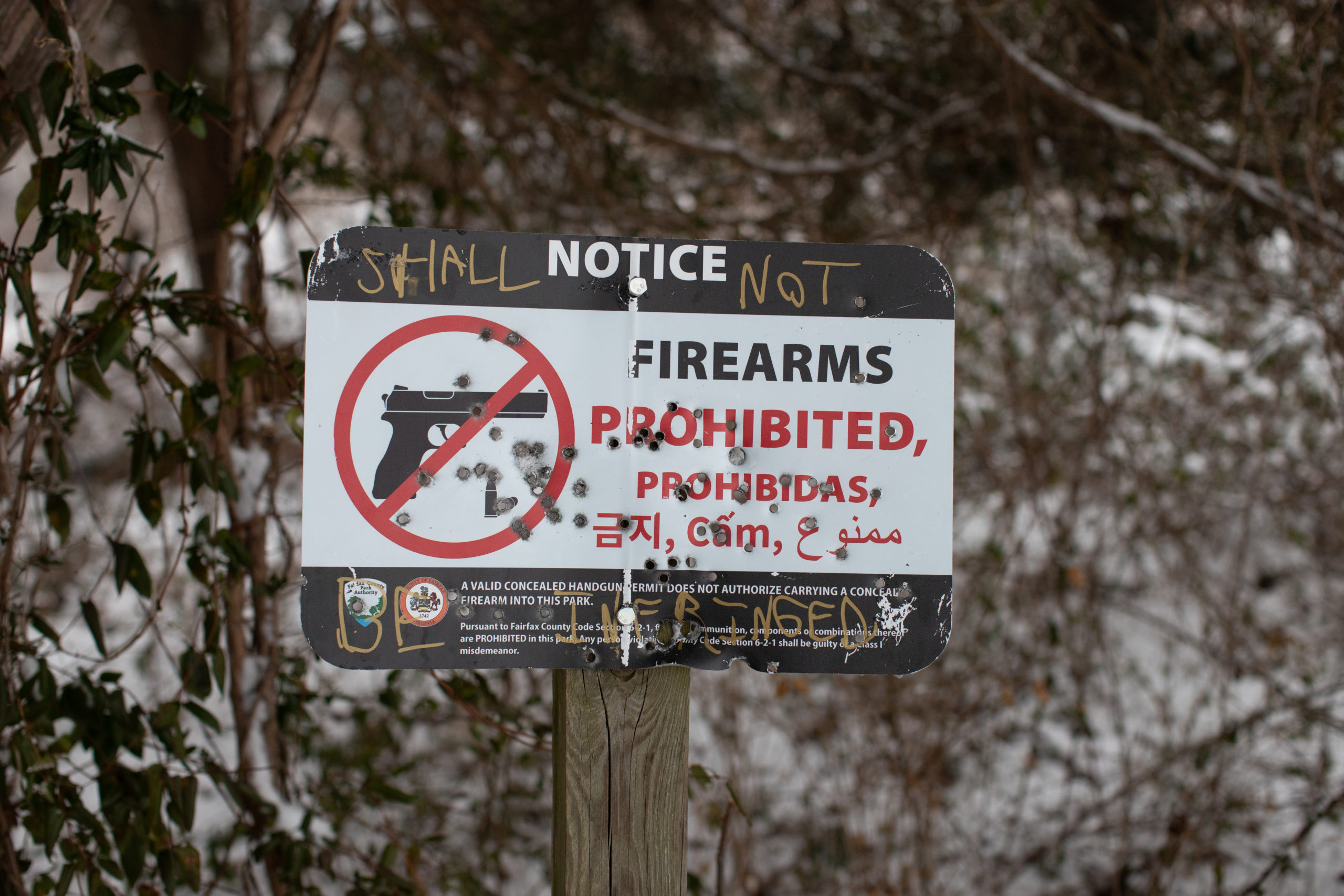 A sign prohibiting the possession of firearms at Bren Mar Park in Alexandria, Virginia, was stolen, shot and returned by members of the Virginia Gray Ranks as a form of protest against the ordinance, on Feb. 1, 2021. (Kaylee Greenlee - Daily Caller News Foundation)