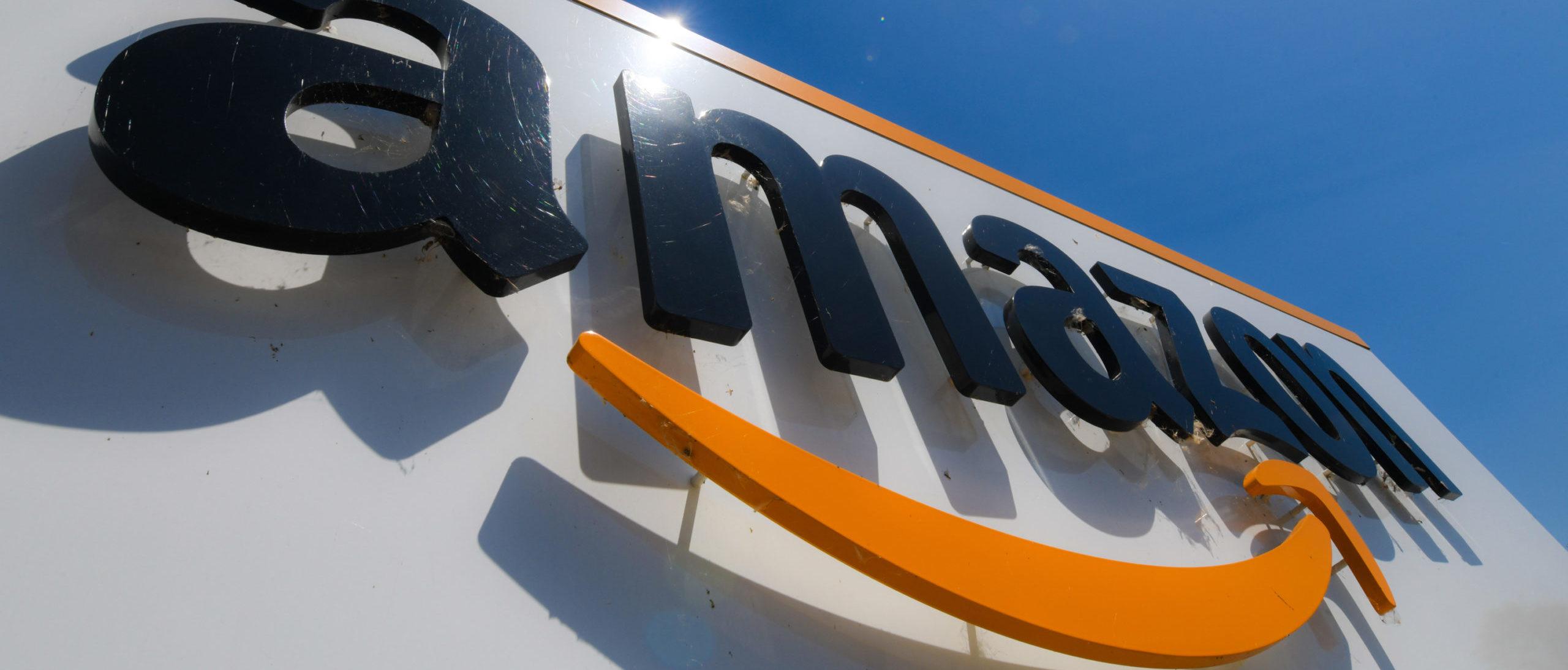 Amazon Removes Book Critiquing Transgender Movement