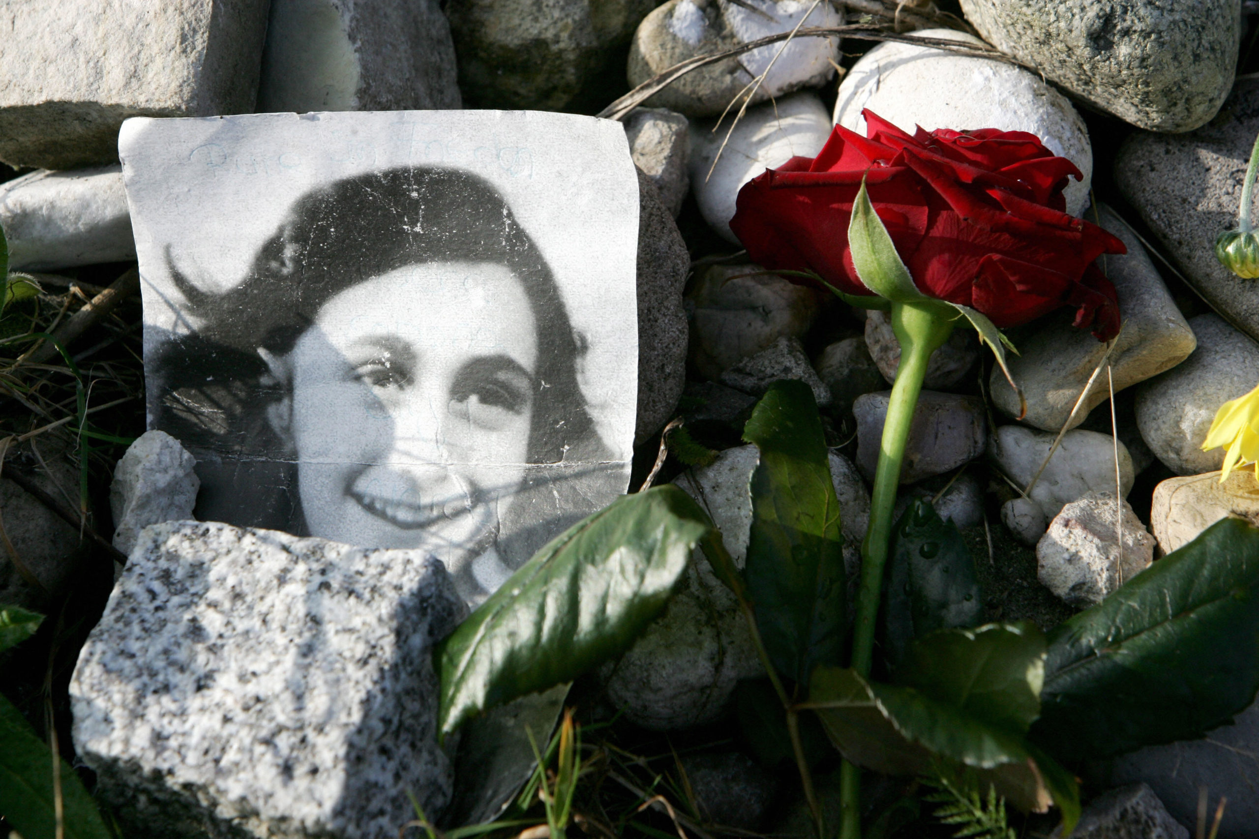 A picture of Anne Frank lies in front of the memorial stone for Jewish girl Anne Frank, author of