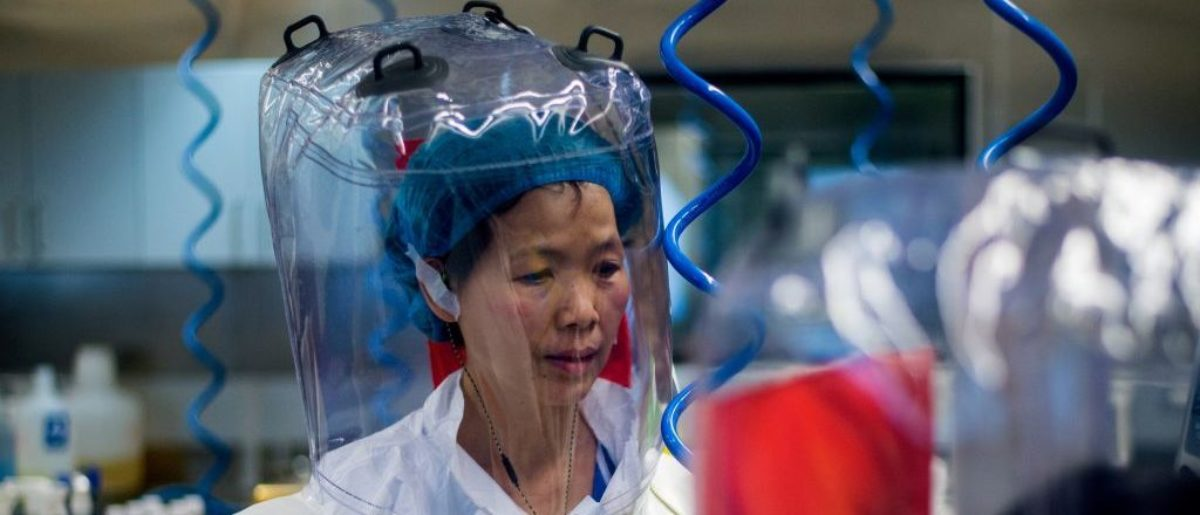 Chinese virologist Shi Zhengli is seen inside the P4 laboratory in Wuhan, capital of China's Hubei province, on February 23, 2017. - The P4 epidemiological laboratory was built in co-operation with French bio-industrial firm Institut Merieux and the Chinese Academy of Sciences. (Photo by Johannes EISELE / AFP) (Photo by JOHANNES EISELE/AFP via Getty Images)