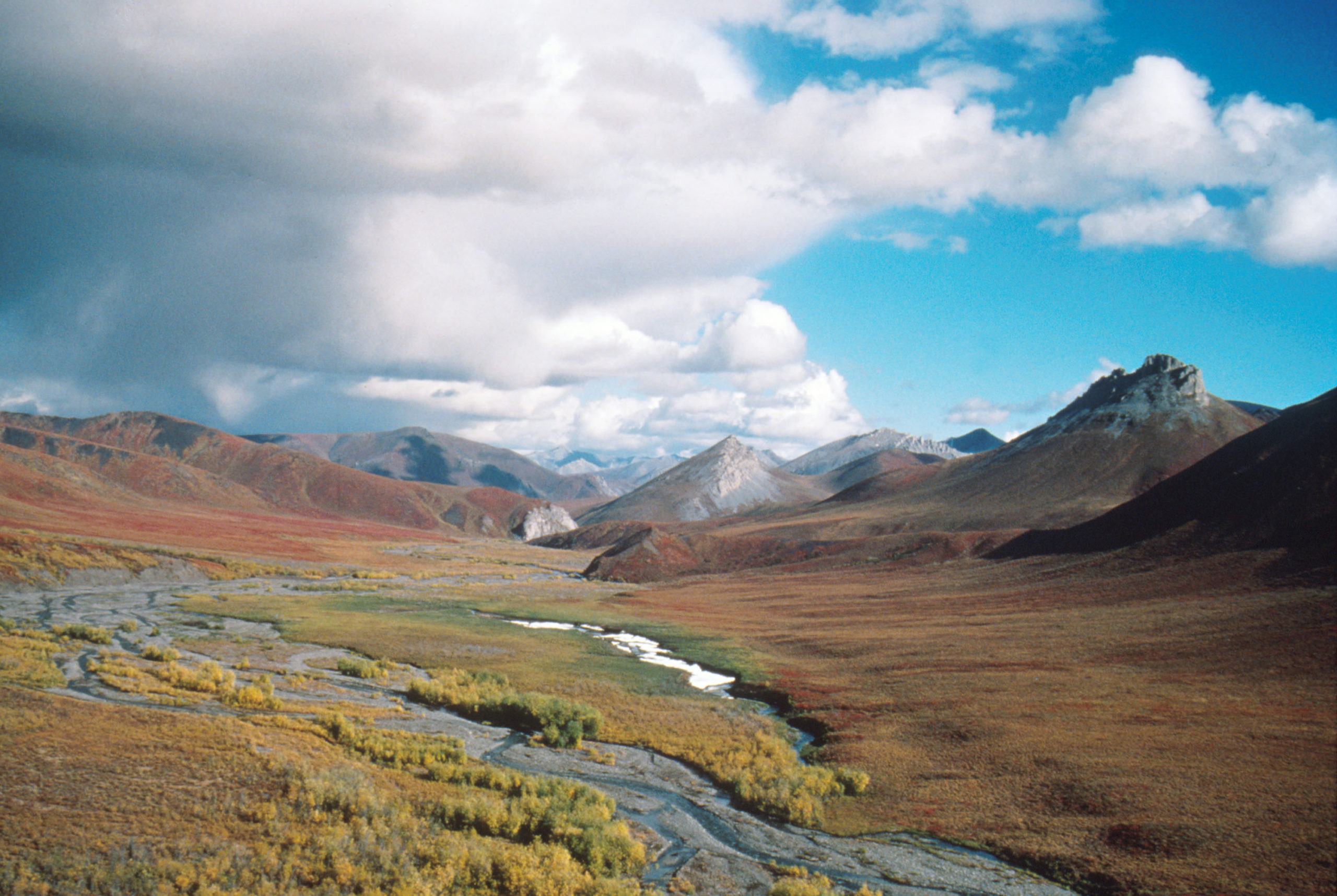 392886 20: (FILE PHOTO) This undated photo shows the Arctic National Wildlife Refuge in Alaska. The Bush administration''s controversial plan to open the refuge to oil drilling was approved by the House of Representatives on August 2, 2001, but it faces a tough battle in the Senate. (Photo by U.S. Fish and Wildlife Service/Getty Images)