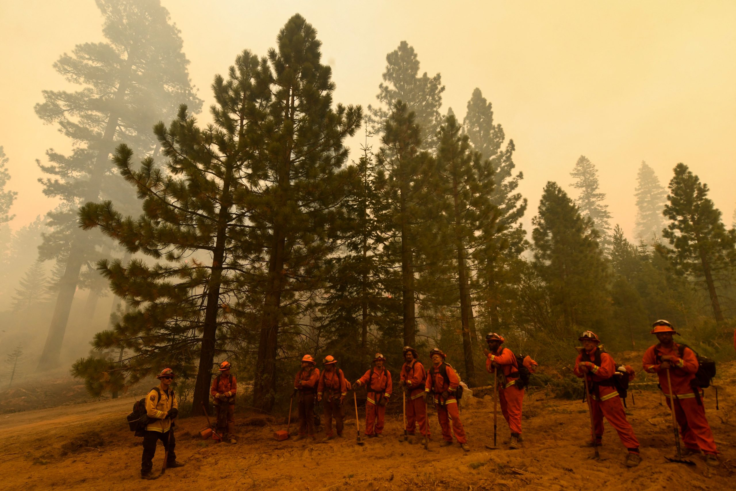 California firefighters walk among burning trees on Aug. 18 in the Plumas National Forest near Janesville, California. (Patrick T. Fallon/AFP via Getty Images)